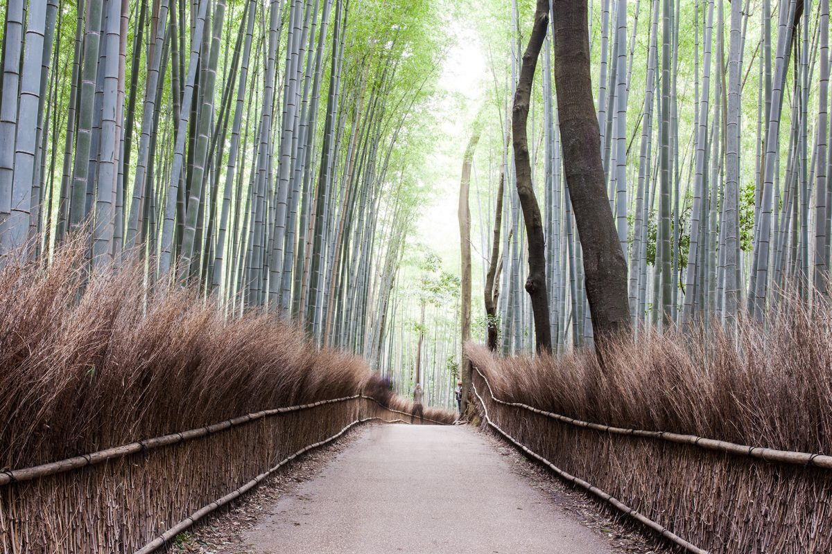 Japan Trip – Departure Day