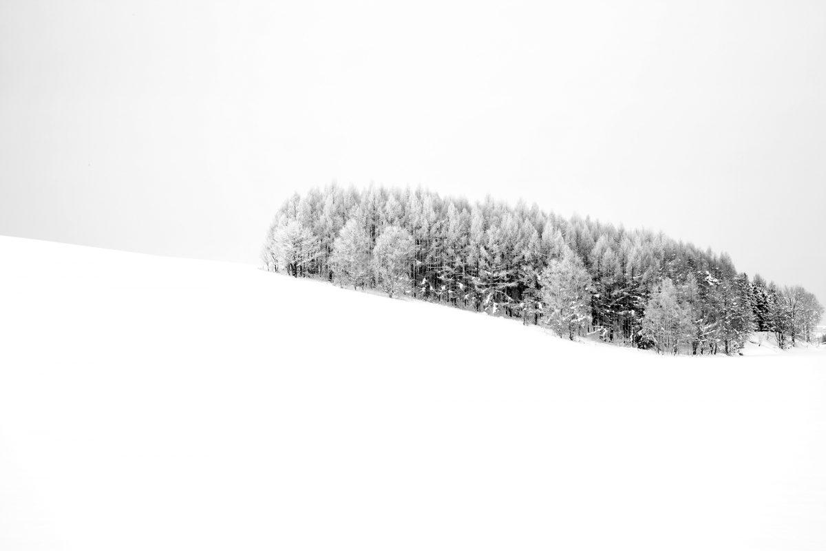 Biei - Hokkaido