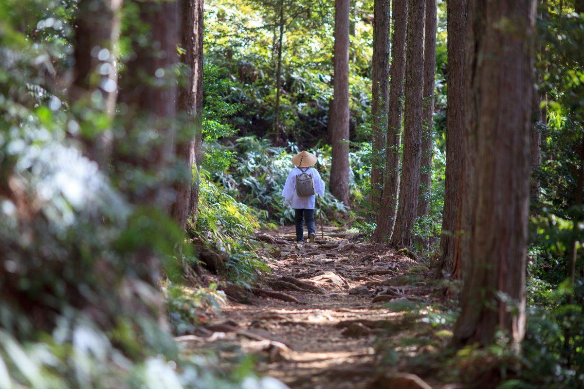 Walking Kumano Kodo