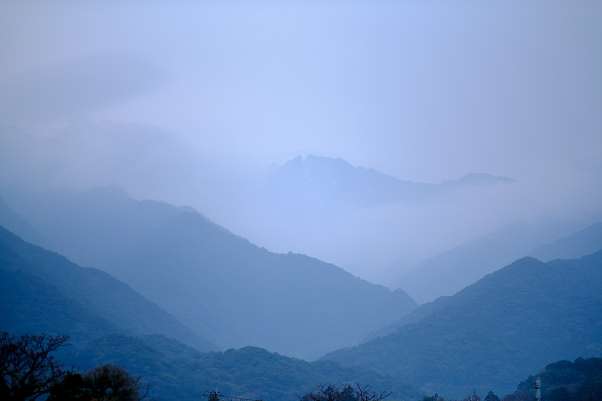 Yakushima Mountains