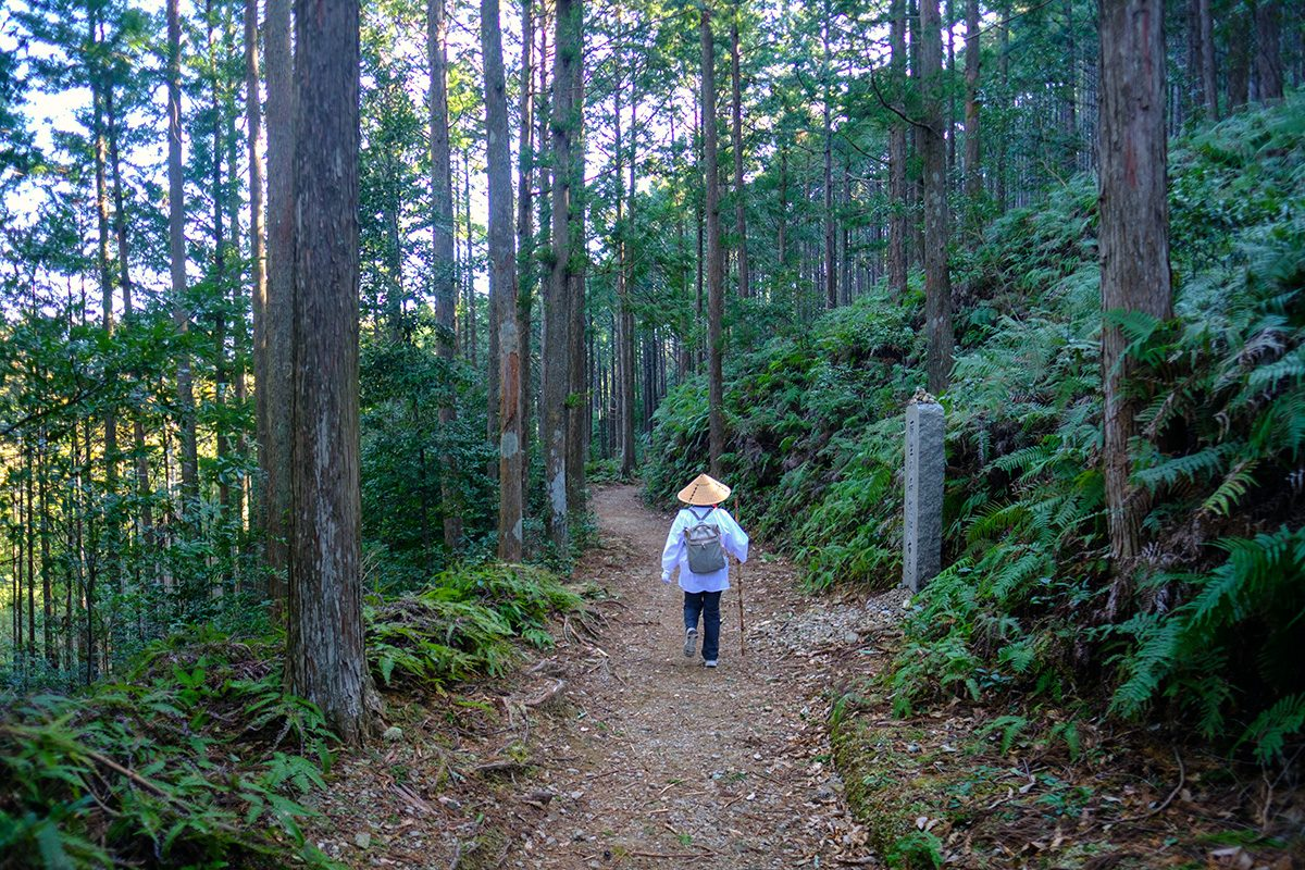 Walking Kumano Kodo