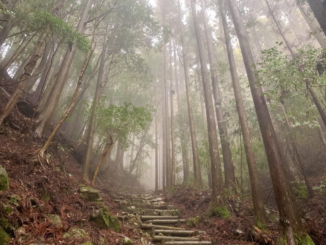 Hike Down From Temple 20 Shikoku