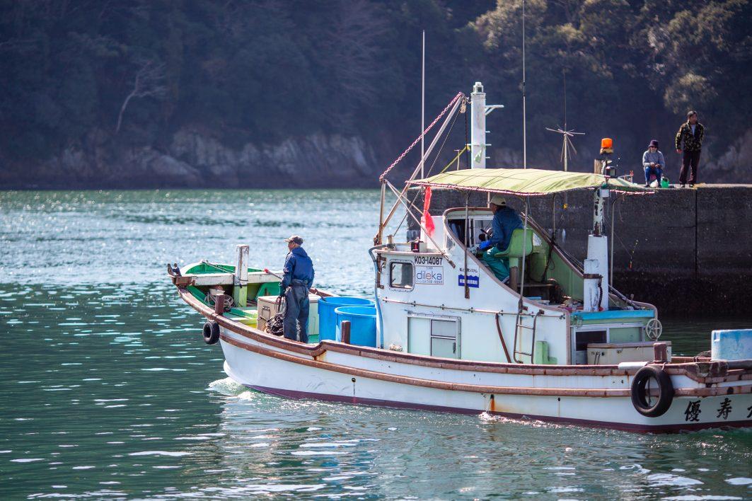 Susaki Fishers Shikoku